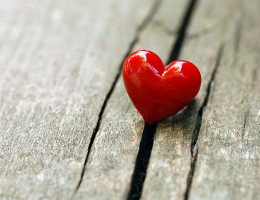 O amor suporta tudo